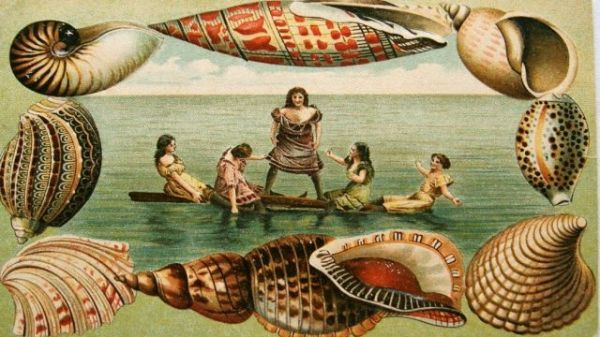 A Victorian postcard image of ladies enjoying the sea
