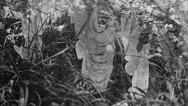 The Fifth And Last Cottingley Fairy Picture